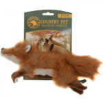 country-pet-fox